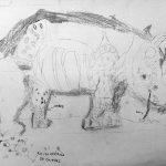 Le Rhinocéros de Dûrer dessiné par des enfants